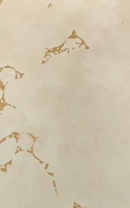 Antik Spiegel Natur mit Goldakzent